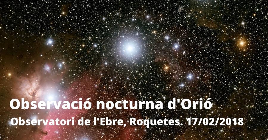 Observació nocturna d'Orió