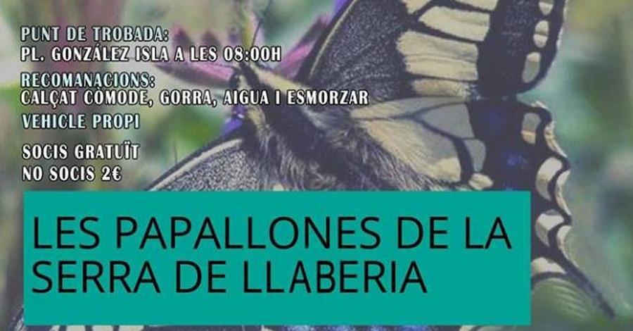 (ajornada) Sortida: Les papallones de la Serra de Llaberia