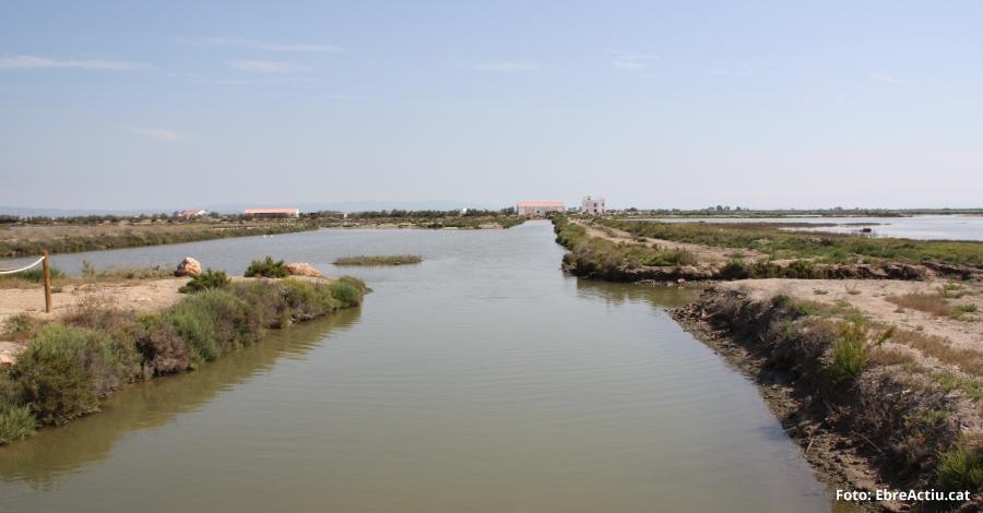 El Govern aprova l'Estratègia del patrimoni natural i la biodiversitat de Catalunya