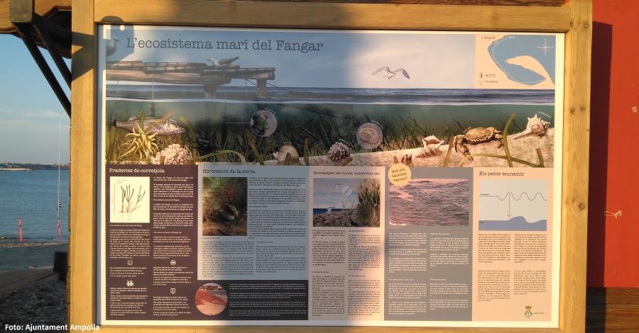 L´Ajuntament de l´Ampolla engega una campanya informativa sobre el fons marí de la costa del municipi