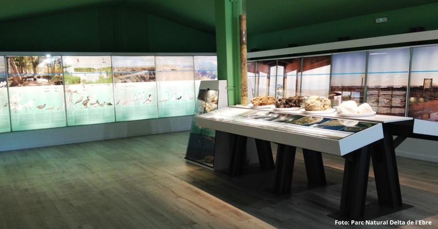 El Parc Natural del Delta de l'Ebre renova l'exposició permanent de l'Ecomuseu