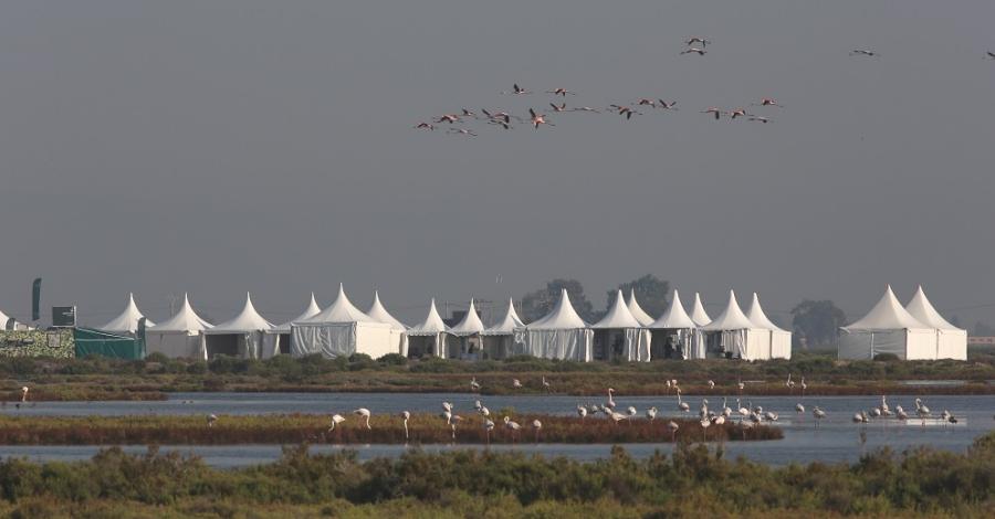 El Delta Birding Festival omple el delta de l'Ebre d'ornitòlegs i aficionats a la natura