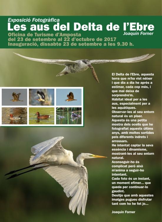 Exposició fotogràfica «Les aus del Delta de l'Ebre», de Joaquín Forner
