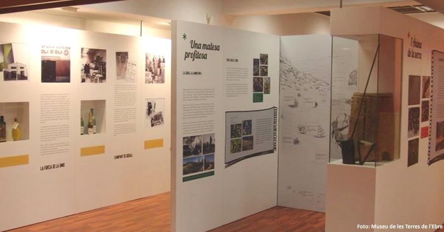 Obre el Centre d'Interpetació de la Serra de Godall | EbreActiu.cat, revista digital per a la gent activa