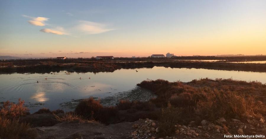 MónNatura Delta reobre amb noves activitats de natura
