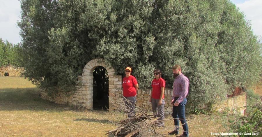Les Jornades Europees del Patrimoni mostraran l'arquitectura rural de Sant Jordi