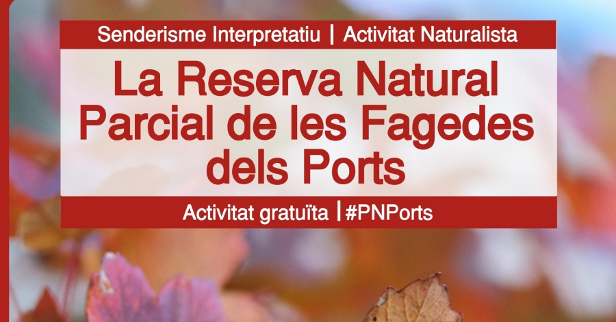 La Reserva Natural Parcial de les Fagedes dels Ports