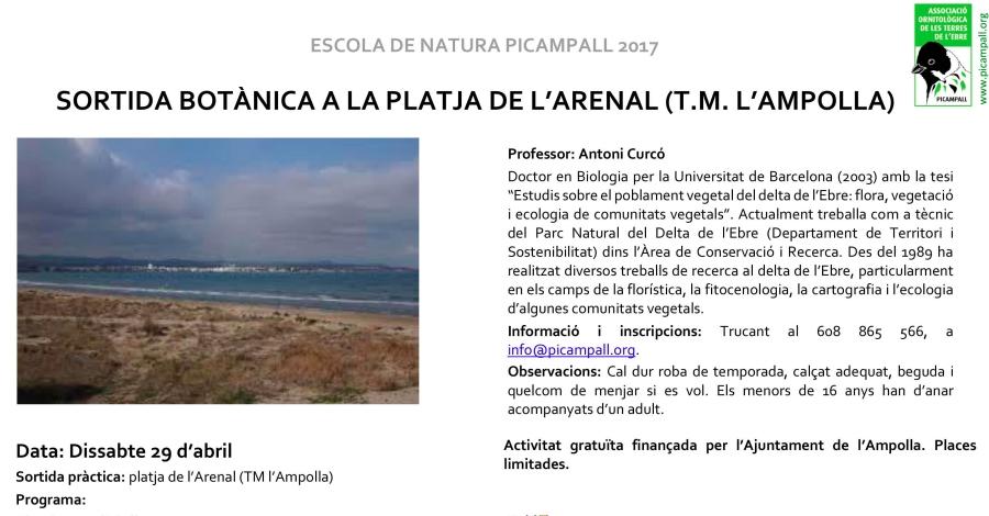 Sortida botànica a la platja de l'Arenal