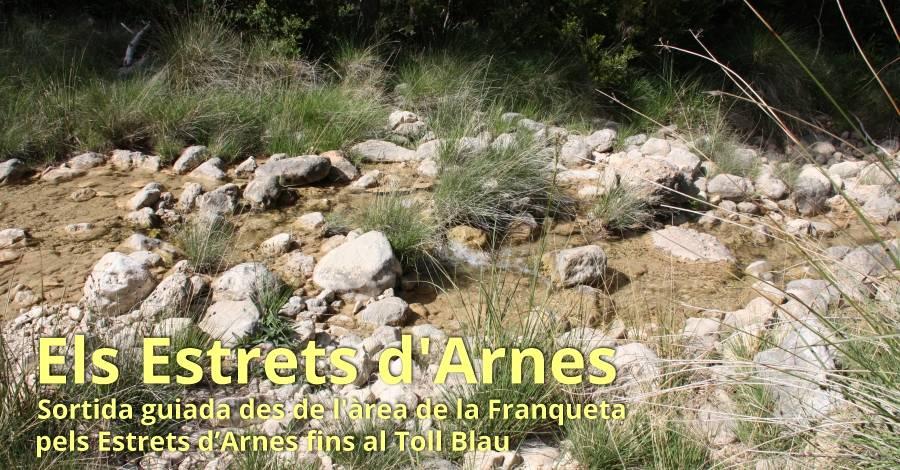 Els Estrets d'Arnes