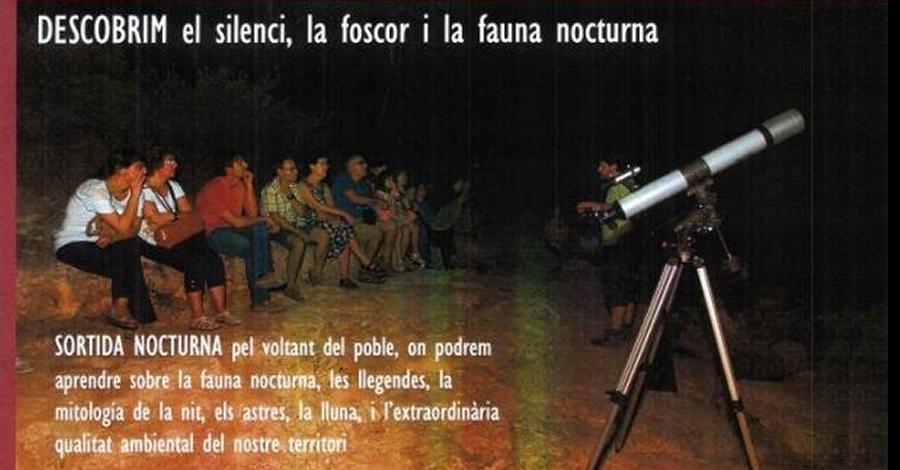 Sortida nocturna: Descobrir el silenci, la foscor i la fauna nocturna