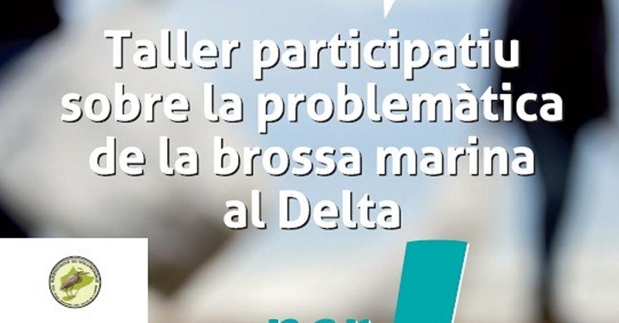 Taller participatiu sobre la problemàtica de la brossa marina al Delta