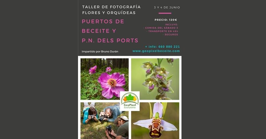 Taller de fotografia flors i orquídies per Beseit i pel Parc Natural dels Ports