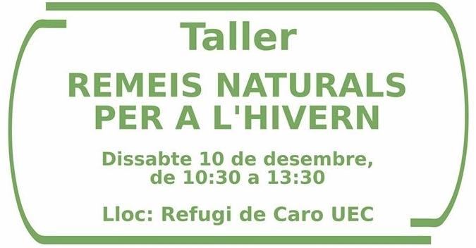 Taller: Remeis naturals per a l'hivern