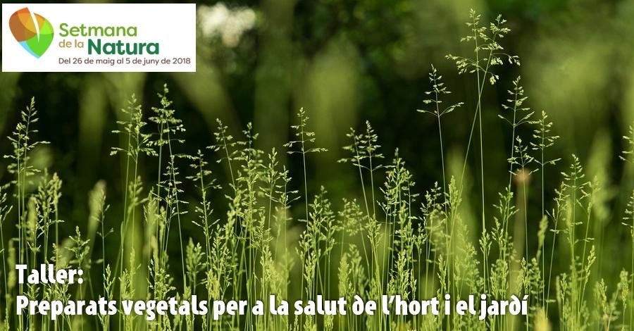 Taller: Preparats vegetals per a la salut de l'hort i el jardí