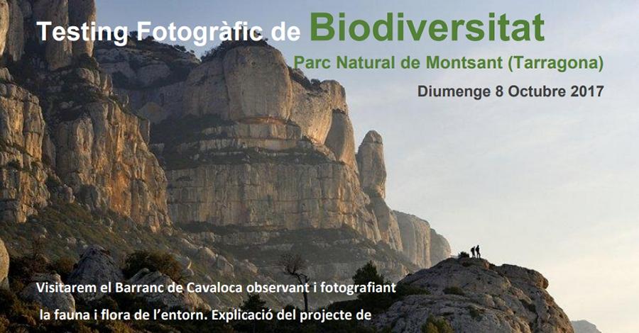 Testing Fotogràfic de Biodiversitat al Parc Natural de la Serra de Montsant