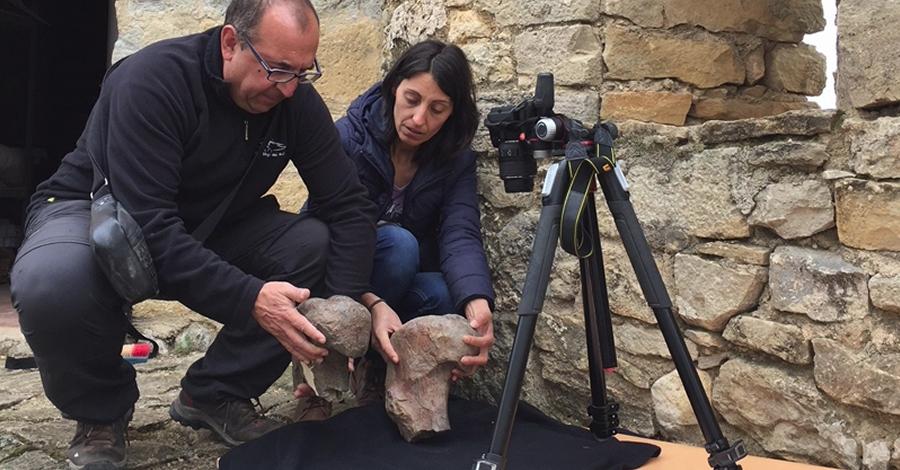 La revista científica Cretaceous Research publica un treball amb dinosaures descoberts a Morella   EbreActiu.cat, revista digital per a la gent activa   Terres de l