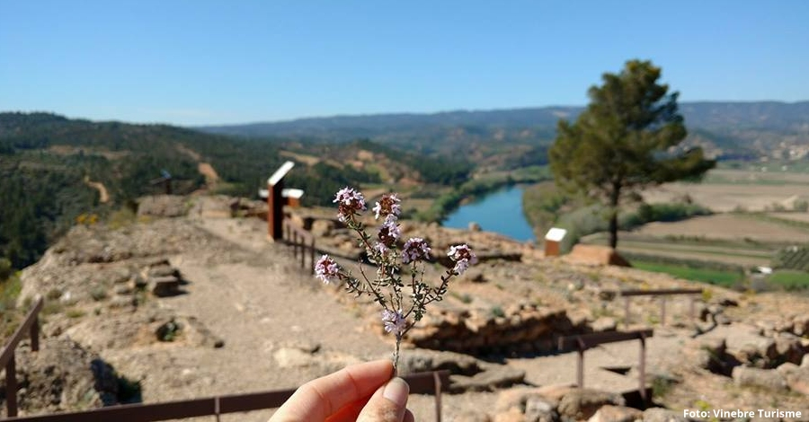 Vinebre organitza la Ruta de les Ermites