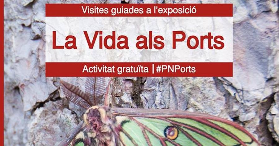 Visita guiada a l'exposició La Vida als Ports