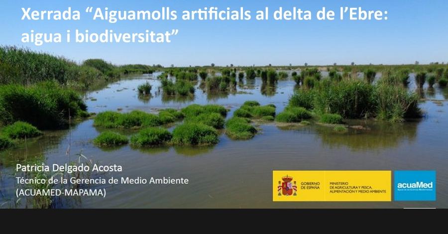 """errada """"Aiguamolls artificials al delta de l'Ebre: aigua i biodiversitat"""""""
