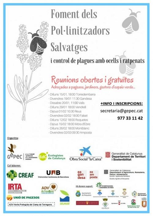 Salvem els insectes pol·linitzadors